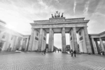 The German economy is on the rise