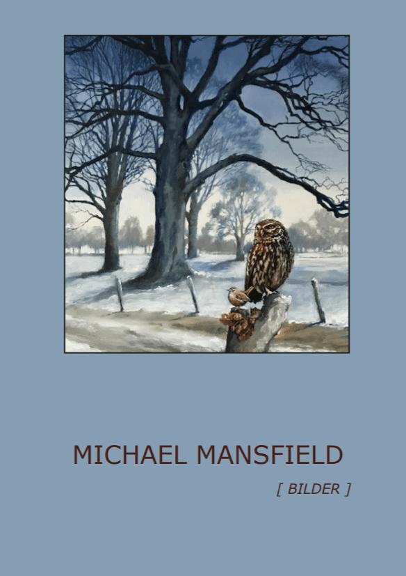 Michael mansfield