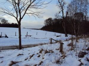 uckermark-weisse-landschaft
