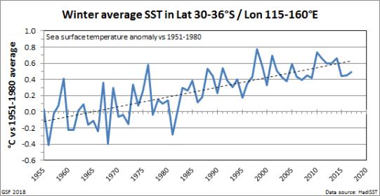 SST_winter_trend