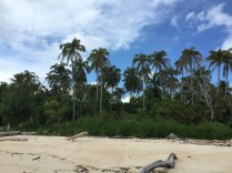 Pulau Plun