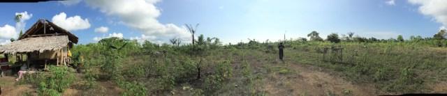 Lahan kosong 2 km dari Bandar udara Kuabang. Kredit: Avivah Yamani