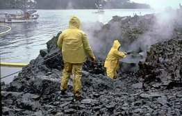 Photo of Workers Cleaning up Oil Spill