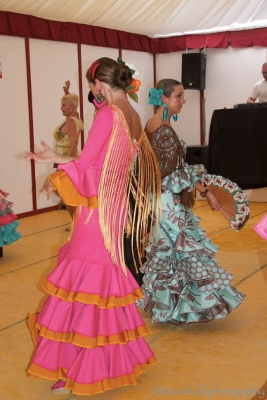 061 Flamenco_new