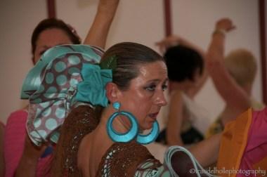 064 Flamenco_new