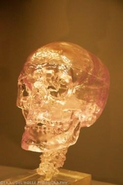 Ötzi, der Mann aus dem Eis
