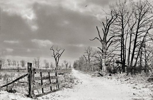 Cedarburg, Wisconsin - Lueder's farm. Typical terrain for SE Wisconsin