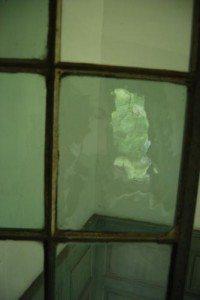 Crown Glass Salubria