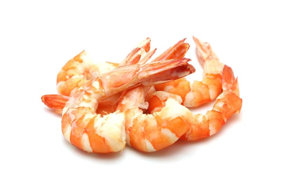 Can my dog eat shrimp