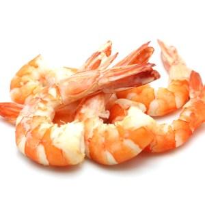 Can My Dog Eat Shrimp?