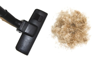 Best Vacuum For German Shepherd Hair