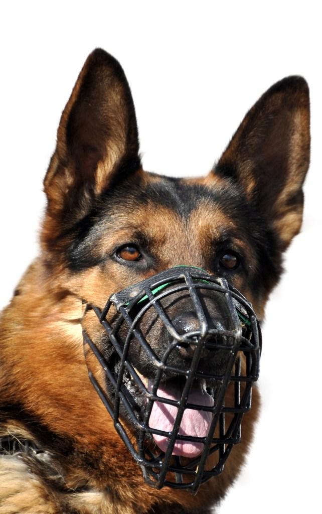 Best muzzle for German Shepherds