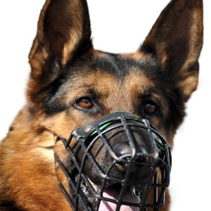 Best Muzzles For German Shepherds