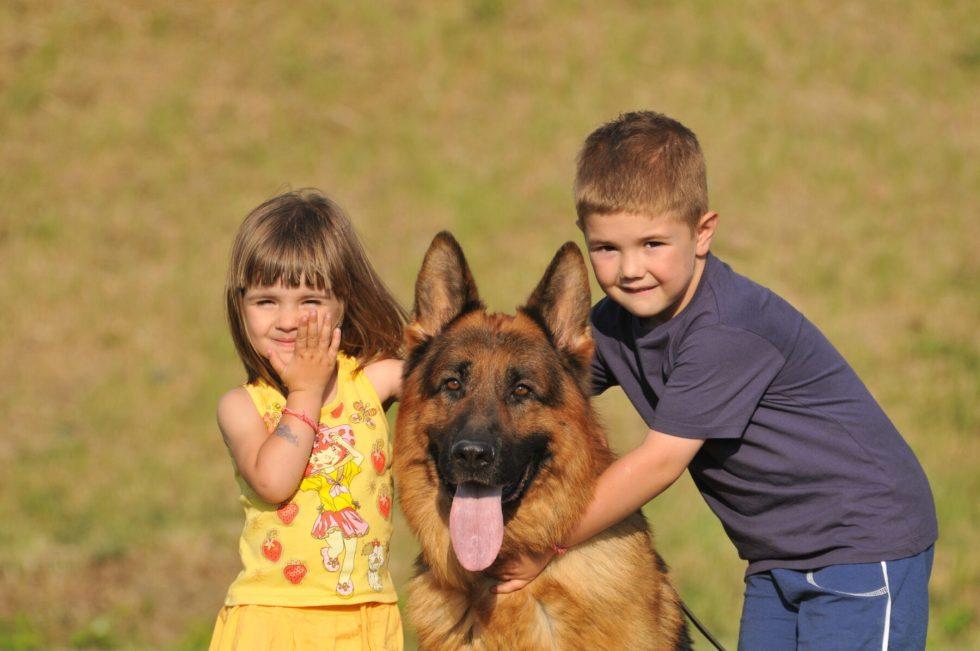 German Shepherd with Kids