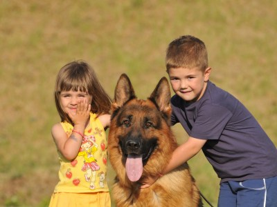 German Shepherd With Kids