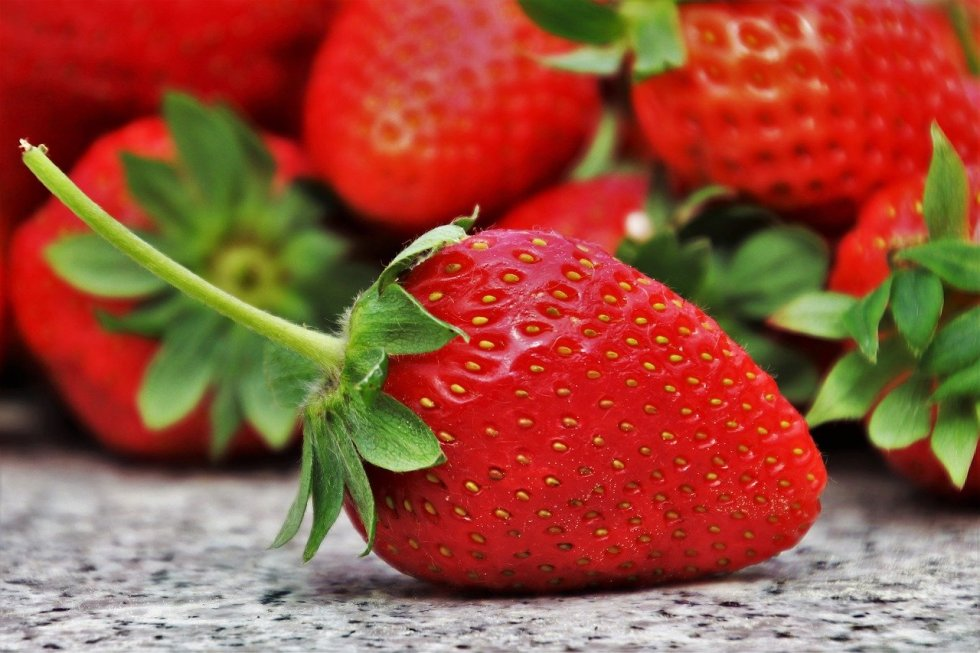 Do German Shepherds like strawberries?