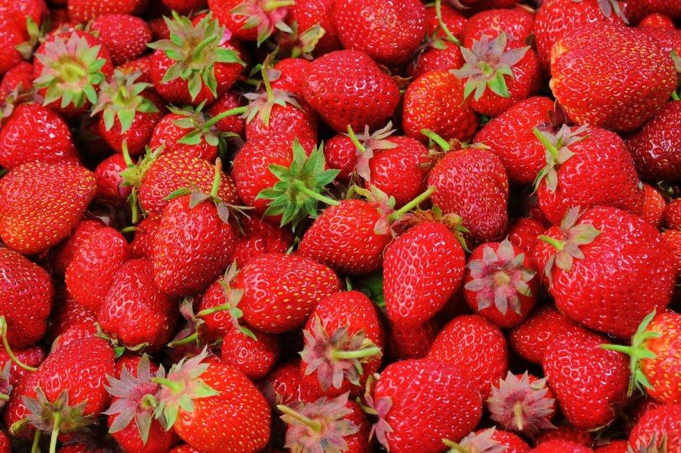 Do dogs like strawberries