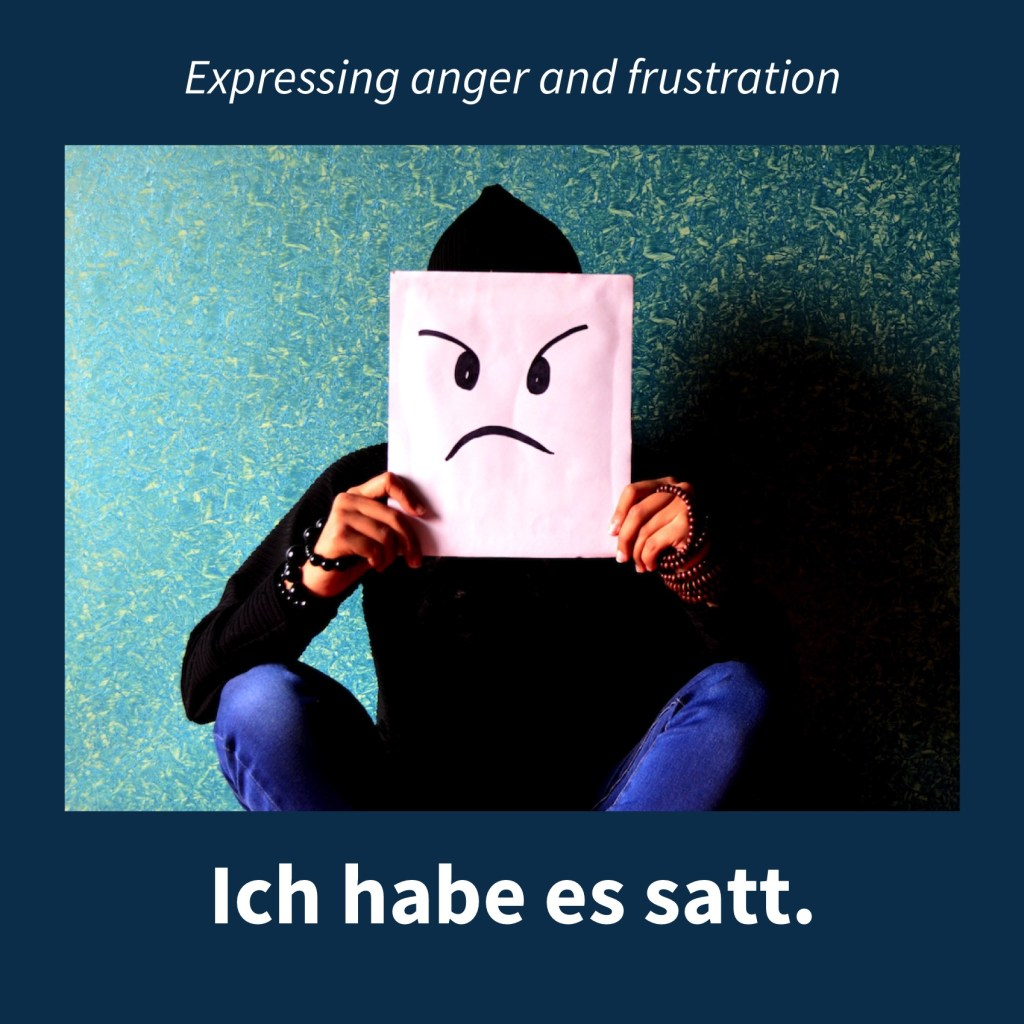Image expressing anger an frustration with the German caption: Ich habe es satt.