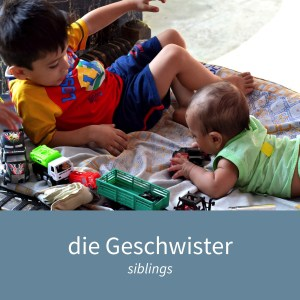 "Image showing two children playing and the caption ""die Geschwister - siblings"""