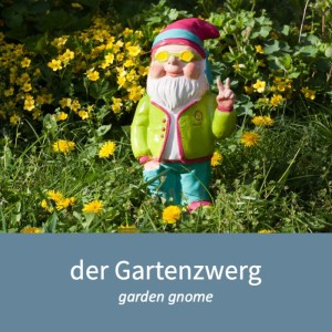 "Image of a garden gnome and the German word for it: ""der Gartenzwerg"""