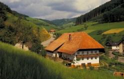 Bärenbachtal, Black Forest