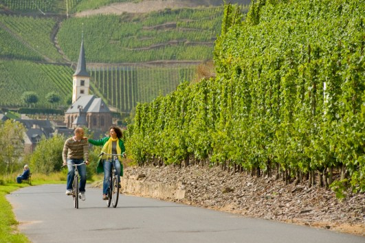 Cycling in Germany: In the Moselle wine region