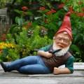 Schrebergarten gnome