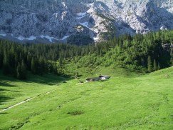 Alpine pastures ready to be occupied by cows