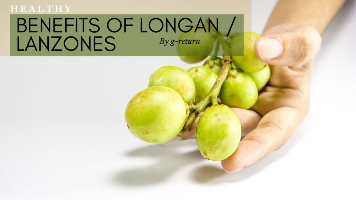 Benefits-of-duku-lanzones