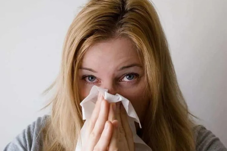 Home Allergy Relief