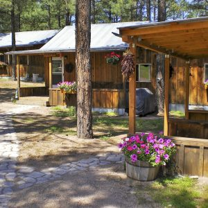 Learn More About Our Ranch