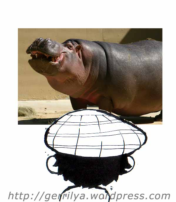 foto kuda nil (hippo) diambil di www.sodahead.com
