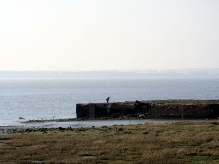 Coastal Reserve 2