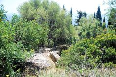 Ruins of Old Skala