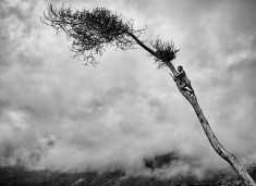 Genesis: Yali hunter, Papua New Guinea