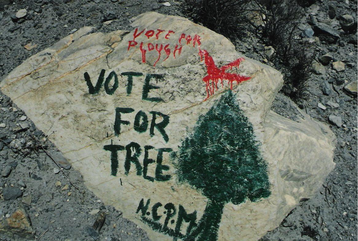 vote-for-tree