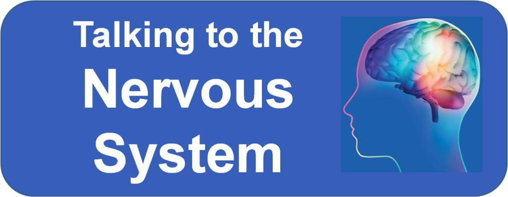 Talking to the Nervous System course button