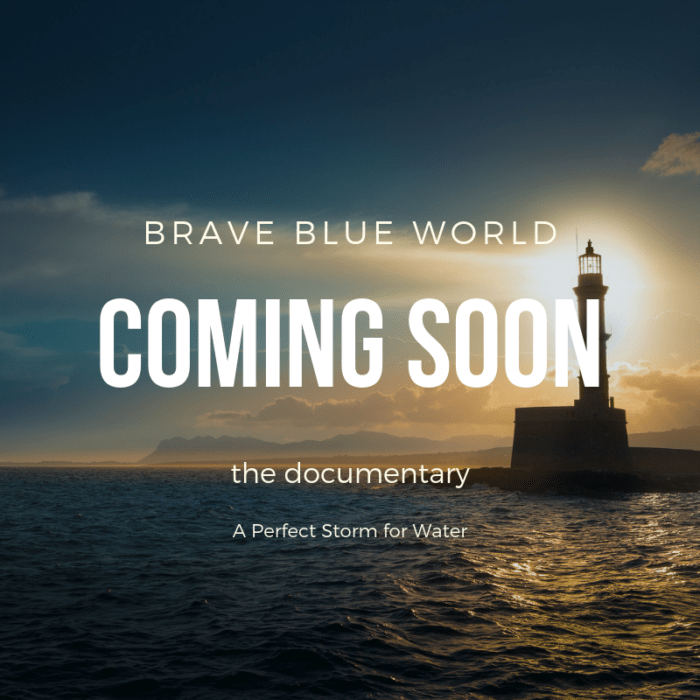 Brave Blue World