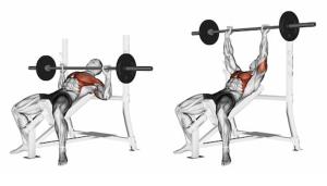 press-bar-lying-on-incline-260nw-425668825