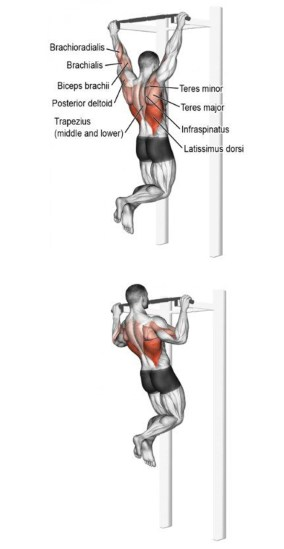 Wide grip back pull up final
