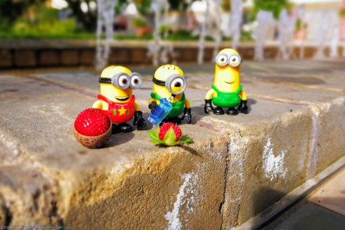 Three minions with strawberries