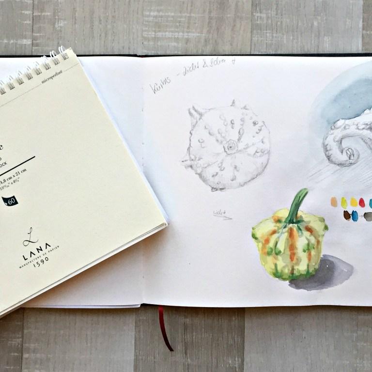 Read more about the article Die Qual der Wahl – Wie wählst Du das passenden Skizzenbuch für Dich?
