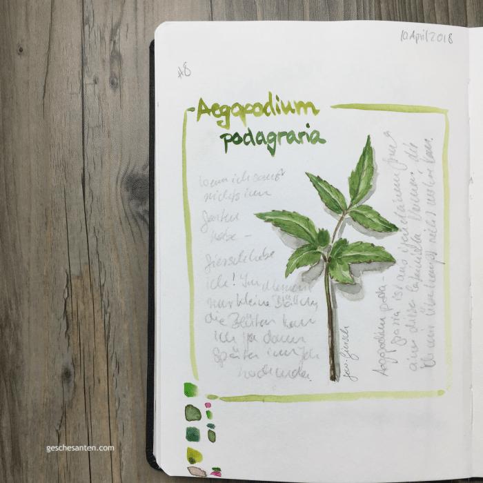 Kleine Kniffe und Ideen, um Dein Skizzenbuch interessanter zu machen