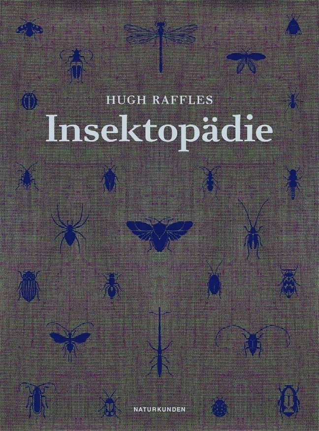 Hugh Raffles, Insektopädie, Buchcover; Quelle: www.matthes-seitz-berlin.de