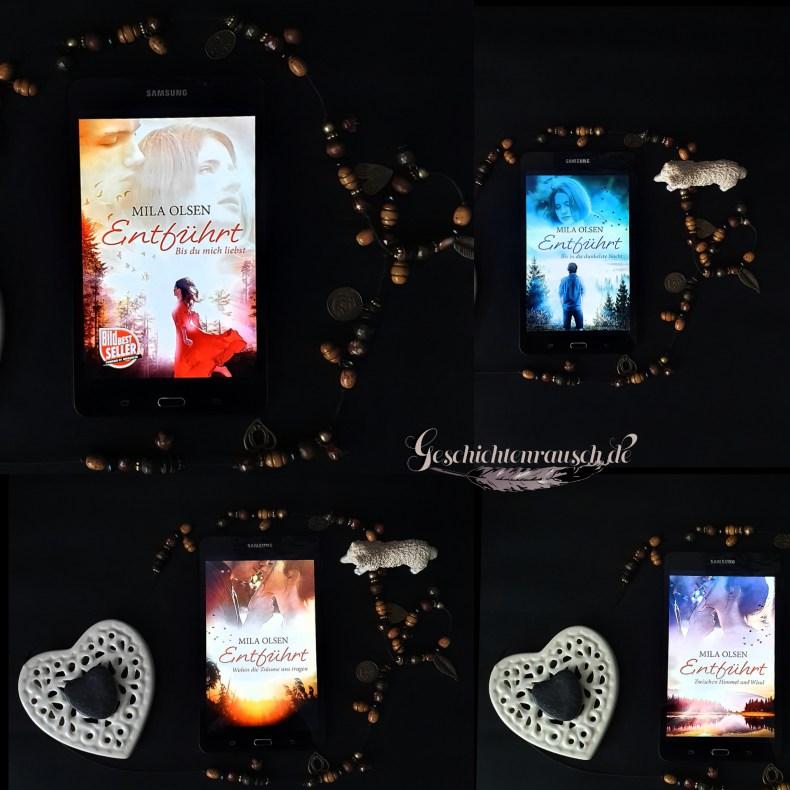 1) Bis du mich liebst; 2) Bis in die dunkelste Nacht; 3) Zwischen Himmel und Wind; 4) Wohin die Träume uns tragen Book Cover