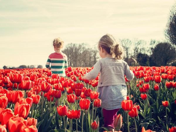 Frühlingserzählung