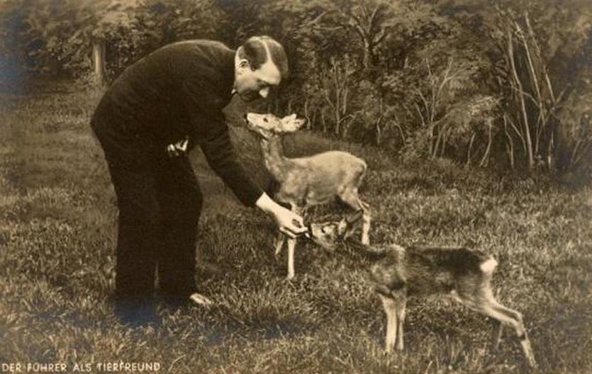 """""""Adolf-Hitler-Medaille"""" für Tierschützer"""