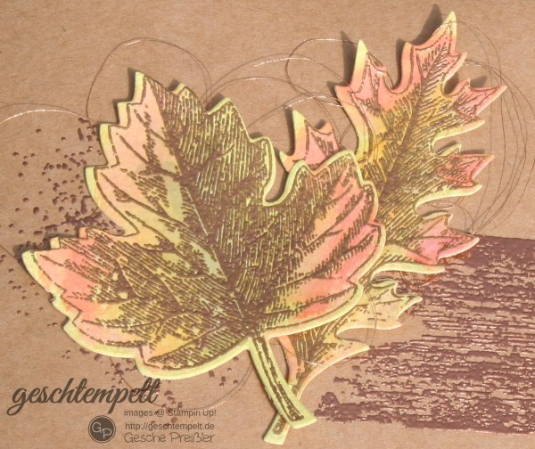 durch die Blume , stampin up, Thailand Achivers Blog Hop October, Timeless Textures, Touch of Textures, Vintage Leaves