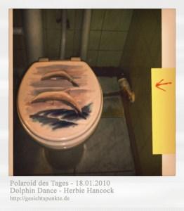 Polaroid des Tages: Dolphin Dance