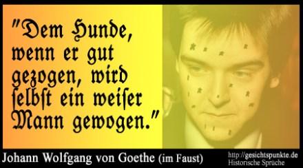 Historische Sprüche: Johann-Wolfgang von Goethe (Faust)
